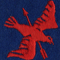 A picture of a cloth badge